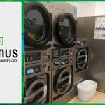 เครื่องซักอบผ้าหยอดเหรียญ DOMUS Clean&Go เครื่องซักอบผ้าอุตสาหกรรมแบบหยอดเหรียญ สำหรับ ร้านสะดวกซัก ลูกค้าที่ต่างประเทศ - 7
